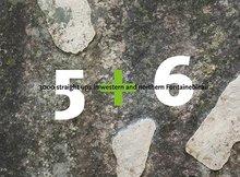 Topo-West-en-Noord-Fontainebleau-5-+-6