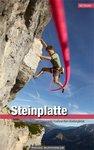 Topo Steinplatte